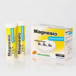 VALLESOL MAGNESIO...