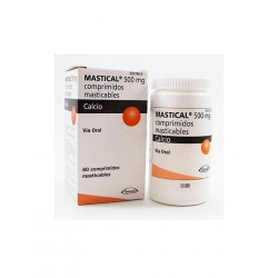 MASTICAL 500 mg COMPRIMIDOS MASTICABLES